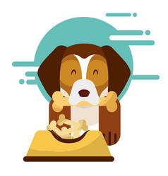 love dog pet vector image