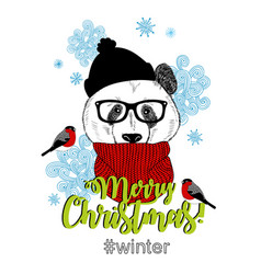 Merry christmas card with funny panda animal in vector