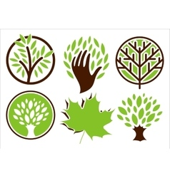 Set of logos of the trees vector image