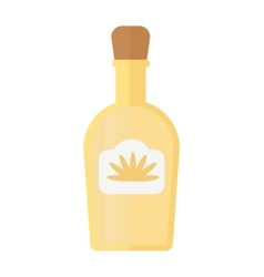 Tequila bottle vector