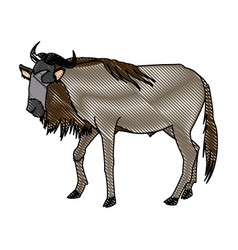 Wildebeest standing african wildlife animal vector
