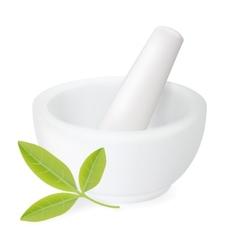 Healing herbs in white ceramic mortar vector