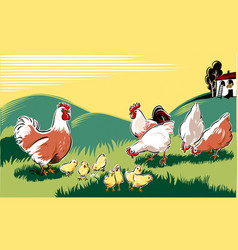 hen chicks a rooster and a hen in a meadow vector image vector image
