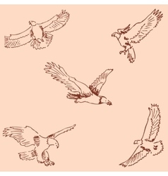 Eagles Sketch pencil Drawing by hand Vintage vector