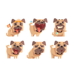 Flat set of pug dog showing various vector