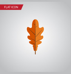 isolated frond flat icon linden element vector image vector image