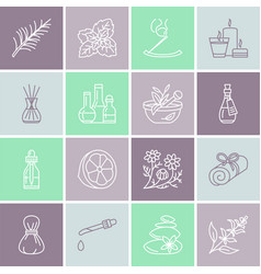 essential oils aromatherapy line icons set vector image