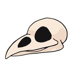 bird skull cartoon motif set vector image