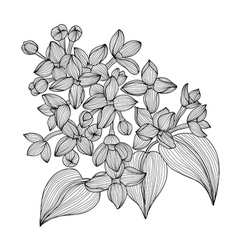 Decorative lilac vector