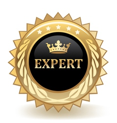 Expert Badge vector image