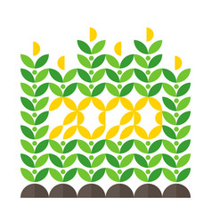 Happy new year greeting card with corn crop vector