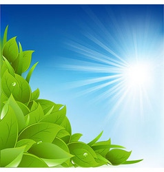 Nature Background With Leafs vector