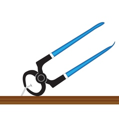 Pliers and nail vector