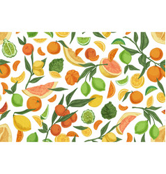 Seamless pattern with different citrus fruits on vector