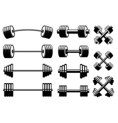 set barbells and dumbells in monochrome style vector image