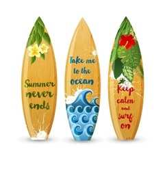 wooden surfboards with type designs vector image