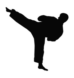 Karate master silhouette vector image vector image