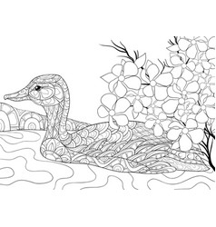 Adult coloring bookpage a cute duck on the river vector