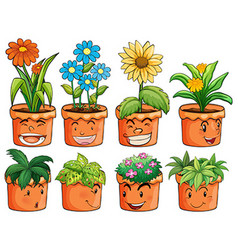 Different types of plant in clay pots vector