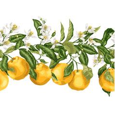 hotizontal seamless pattern line of citrus fruit vector image