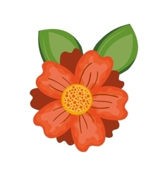 Orange flower icon vector