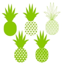 Pineapple silhouettes in green different vector image