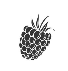 Raspberry glyph icon vector