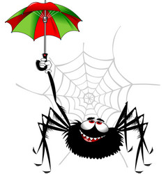 spider and umbrella vector image