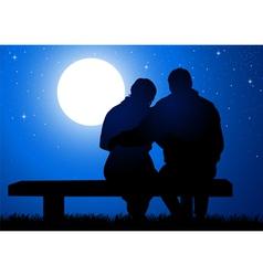 Romantic Night vector image vector image