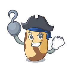 Pirate brazil nut character cartoon vector