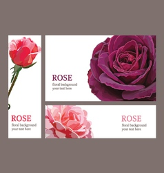 template cards with roses vector image