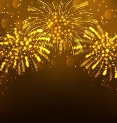 Festive Firework Bursting Holiday Background vector image vector image