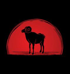 sheep big horn ovis standing vector image