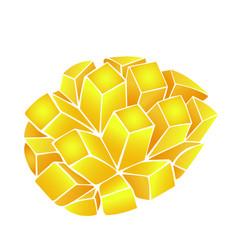 slice of yellow-orange mango isolated on white vector image