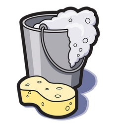 bucket of water and sponge vector image