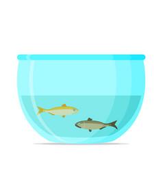 aquarium flat vector image