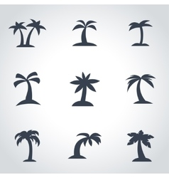 Black palm icon set vector