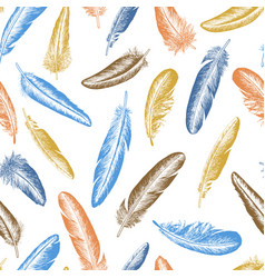 feather natural bird seamless pattern vector image