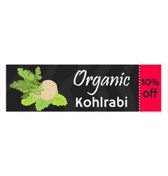 Green kohlrabi coupon vaucher template vector