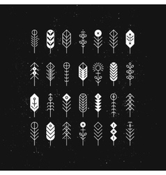 line feathers and arrows vector image
