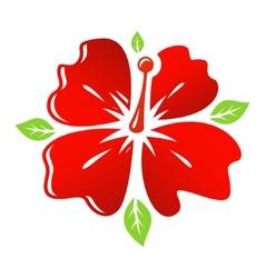 red Flower vector image