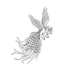 Peacock Drawing Vector Images (over 1,500)