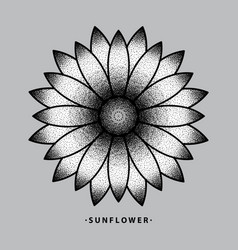 sunflower tattoo design vector image