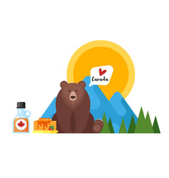 flat style of canadian maple syrup and bear vector image vector image