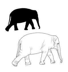 elephant adult animal isolated sketch silhouette vector image vector image
