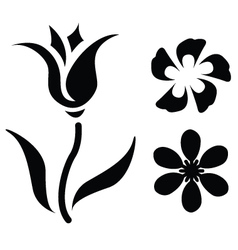 Flower Silhouettes vector image
