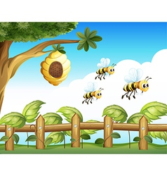 The three bees vector image vector image