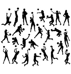 volleyball Sport Activity Silhouettes vector image vector image