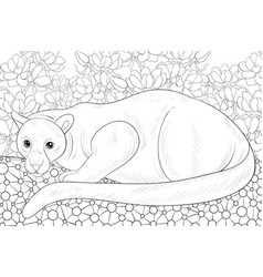 Adult coloring bookpage a cute panther on the vector