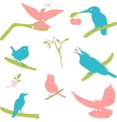 Collection of Bird Silhouettes colored vector image